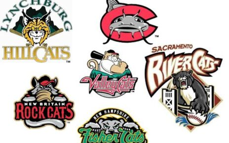 A collection of random baseball team nicknames and logos